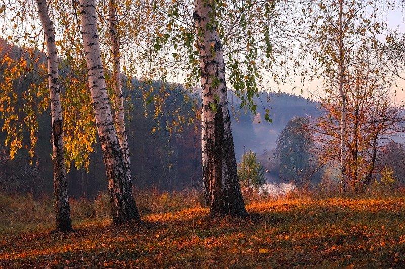Нарисуй художник осеньphoto preview