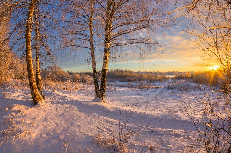 снег иней солнце зима декабрь прошлогодняя зима. Декабрьphoto preview
