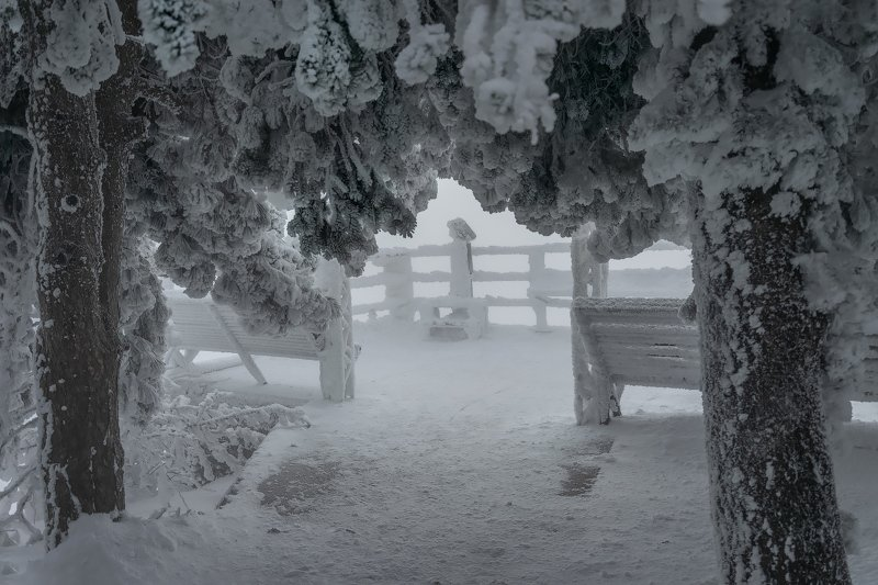Зимний Машукphoto preview