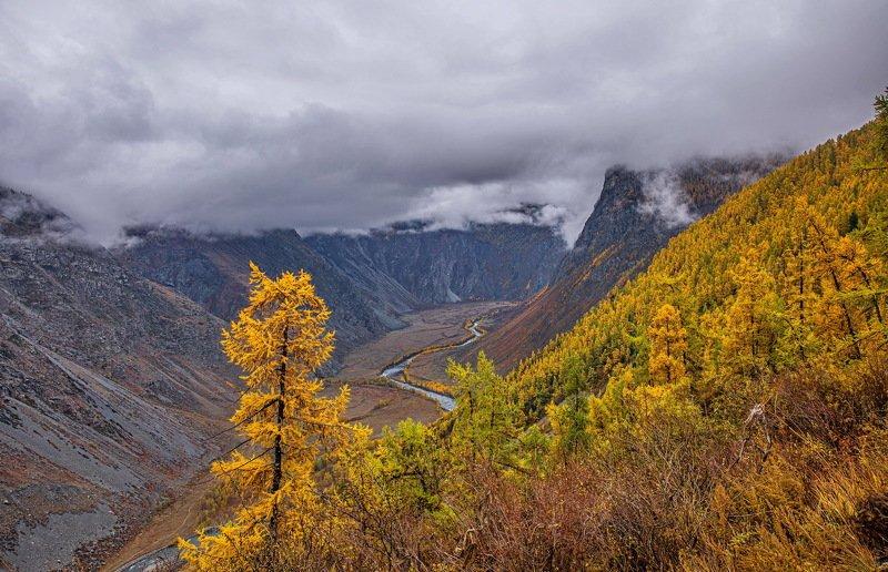 осень горы. алтай. Долина реки Чулышман.photo preview