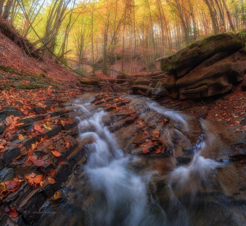 карпаты, осень, пейзаж, лумшоры Осенние Лумшоры...photo preview