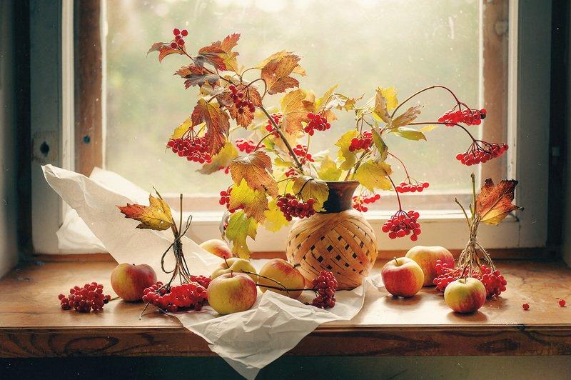 натюрморт, калина, яблоки Последний день сентябряphoto preview