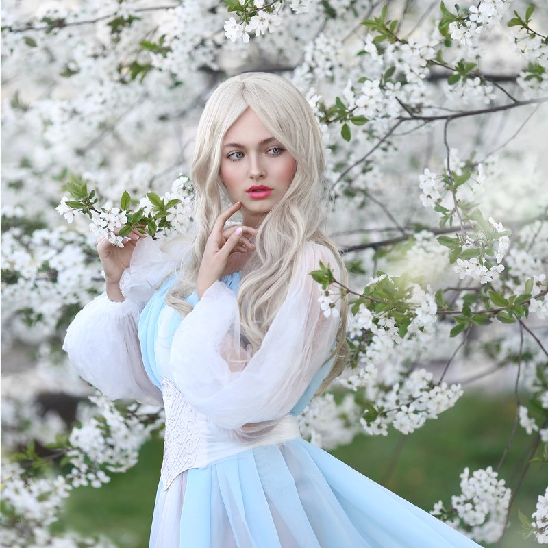 цветущая вишня, блондинка, белые волосы, весна, цветение, вишневый сад, голубое платье photo preview