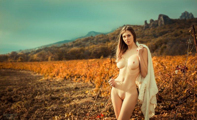 ню, эротика, adult, girl, nude Королева Кабернетовphoto preview