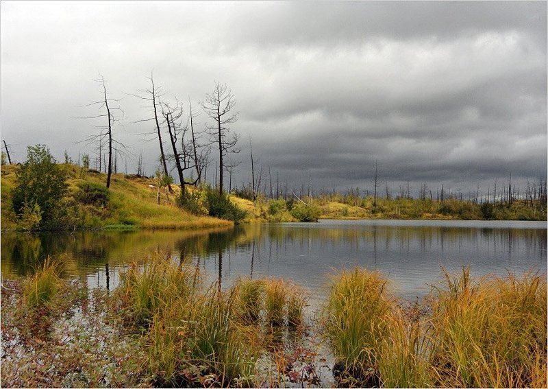 таймыр,осень,озеро хмураяphoto preview