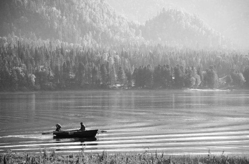 алтай, телецкое, озеро Телецкое озероphoto preview
