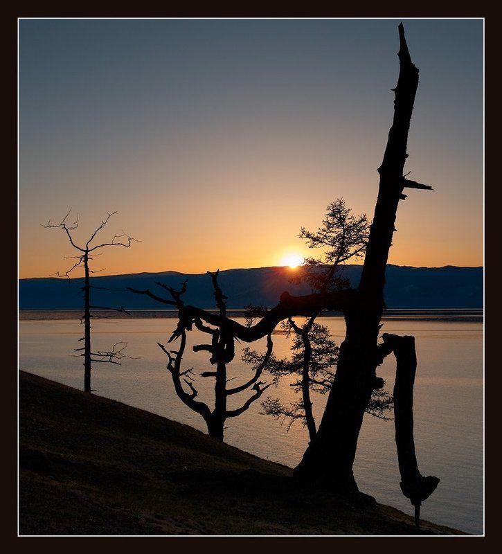 закат, озеро, байкал, деревья Иероглифыphoto preview