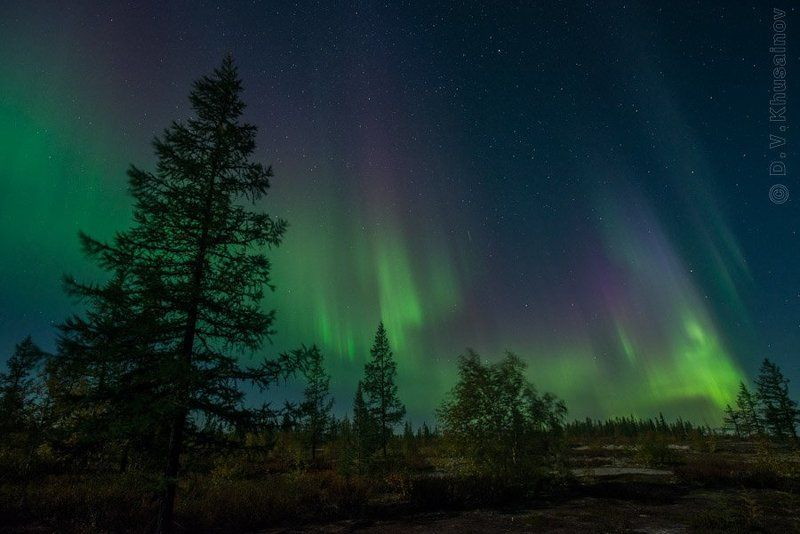 aurora borealis, северное сияние, север, ночной пейзаж Aurora Borealis 2012 #3photo preview