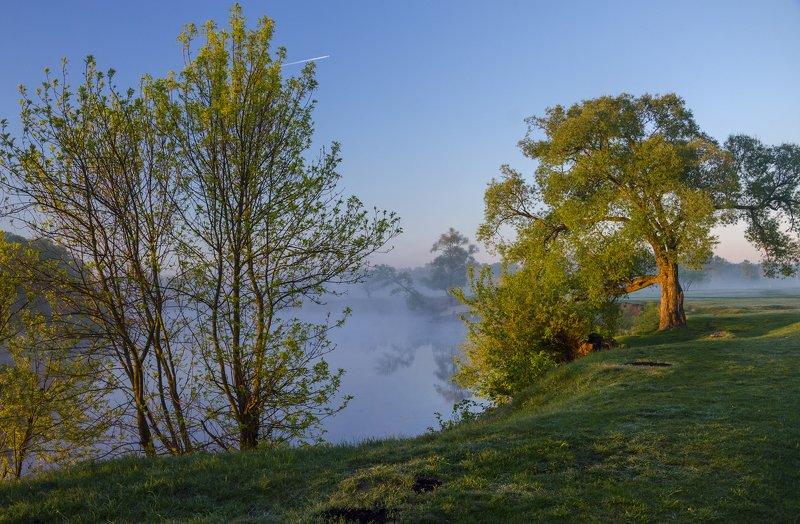 рассвет ,утро ,туман , Утроphoto preview