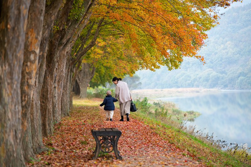 nature, forest, trees, park, mother, love, happy, autumn The Going Outphoto preview