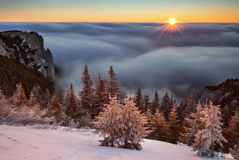 mountain, winter, landscape, travel, nature, romania, colors, ceahlau, fog, sunrise, cold Golden Morningphoto preview