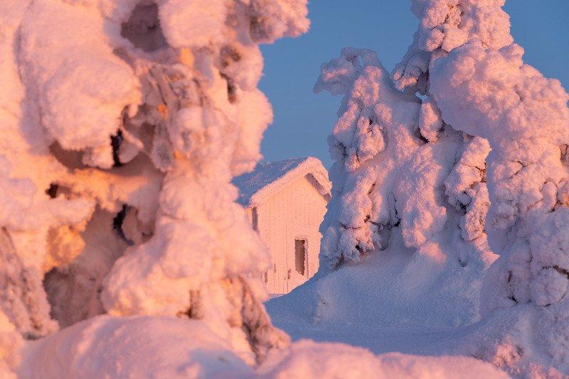 финляндия, лапландия Сахарная пудраphoto preview