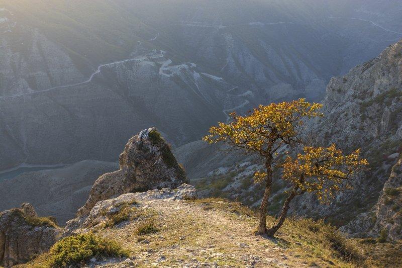 Над Сулакским каньономphoto preview