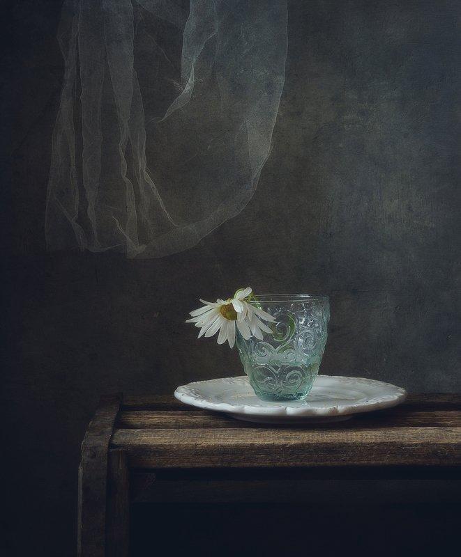 натюрморт,цветы,осень одиночество... фото превью