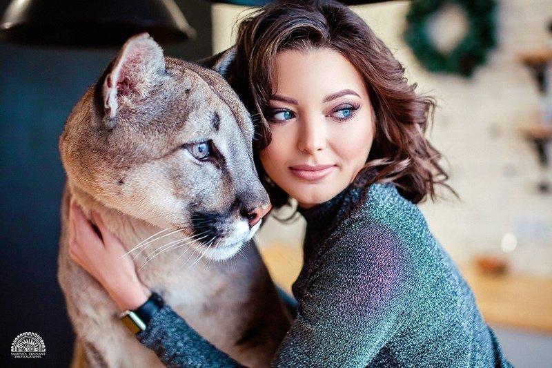 puma, girl, model, fashion, wild animal, cat, studio, photos, glamour ***photo preview
