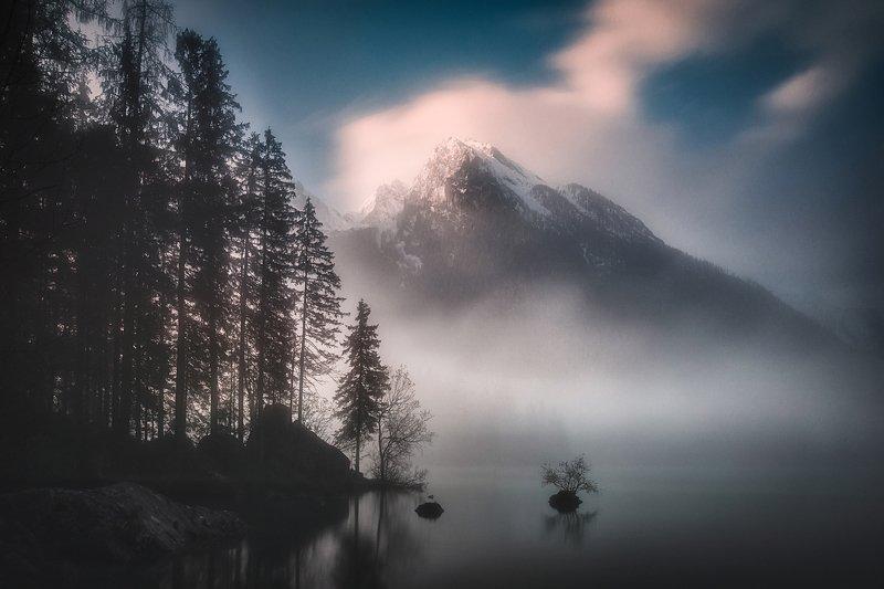 landscape,lake,morning,fog,sunrise,travel,germany,mountains,alps Alpine landphoto preview