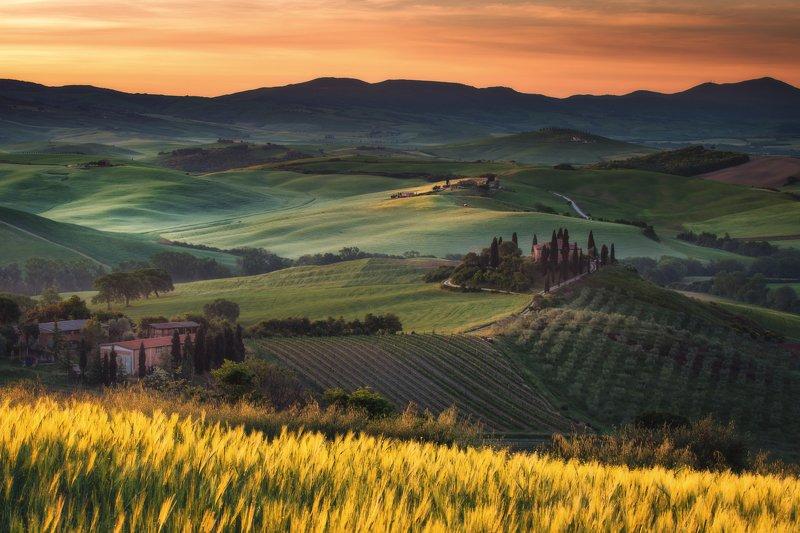 #tuscany #italy #landscapephotography #tuscanyworkshop #photographyworkshop #valdorcia Sunrise at green fields in Tuscanyphoto preview