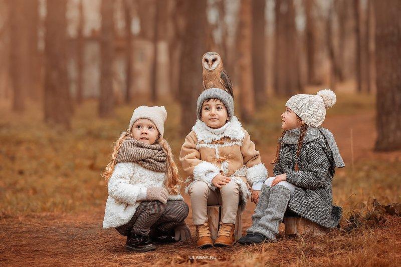 art photo, art, портрет, осень, autumn, ребенок, дети, животное, сова, птица, owl, радость, малыши, друзья, happy, любовь, love, 105mm, kid, children, beautiful, people, eyes, face ***photo preview