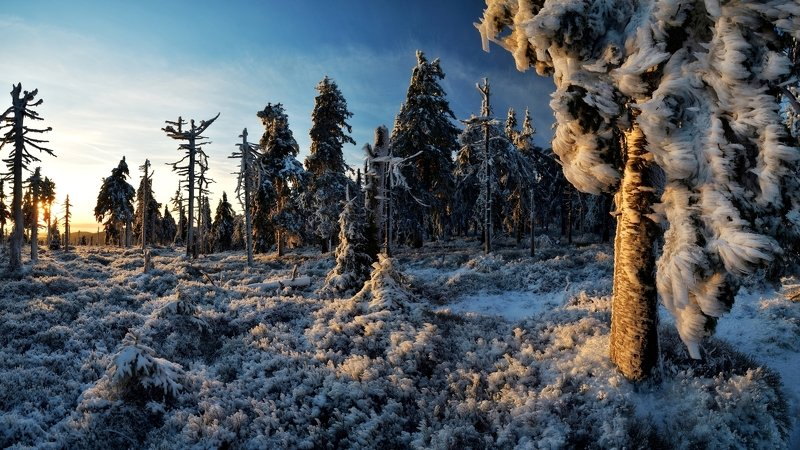 winter, snow, sunset, czech republic, Frozen countryphoto preview