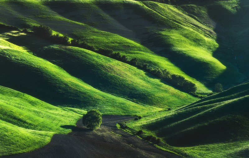 #tuscany #italy #landscapephotography #tuscanyworkshop #photographyworkshop #valdorcia Green Beautyphoto preview