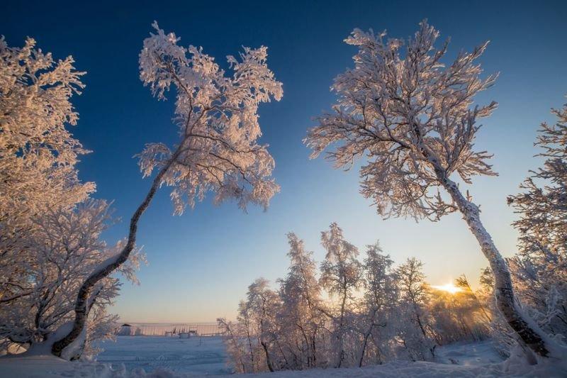 природа, снег, winter, север, кольский край, мороз, sun, солнце, сугробы, тропа Северные пейзажиphoto preview