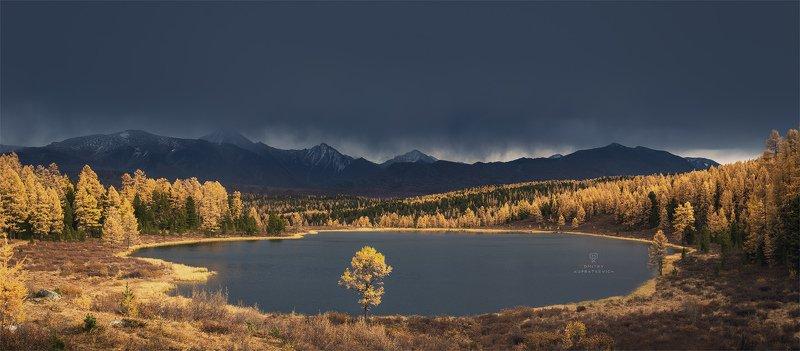 алтай, россия, озеро, горы, осень, пейзаж, природа Золото Киделюphoto preview