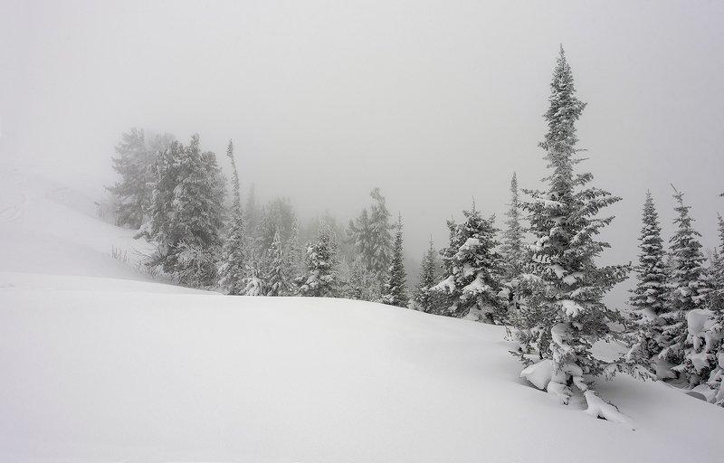снег, иней, мороз, зима, пихты, гора зелёная, шерегеш, горная шория, сибирь Pro туманные перспективы Шерегешаphoto preview