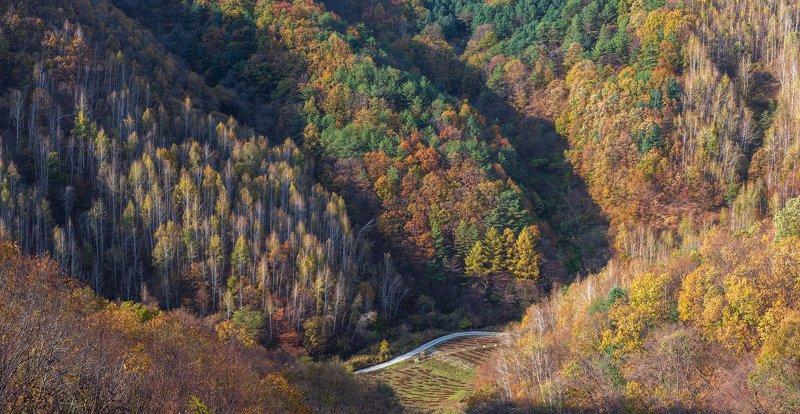 mountains,peak,hiking,autumn,light,colors,colorful Autumn colorsphoto preview