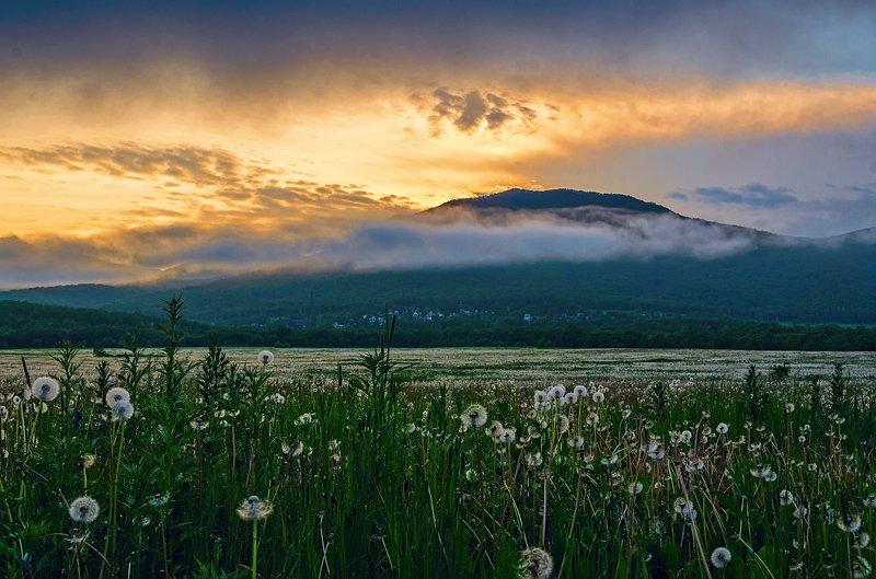 камчатка, путешествия, туман Камчатка - здесь начинается Россияphoto preview