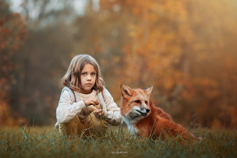 лиса, fox, art photo, art, портрет, осень, autumn, ребенок, девочка, girl, животное, радость, малыш, друзья, happy, любовь, love, 105mm, kid, children, beautiful, закат ***photo preview