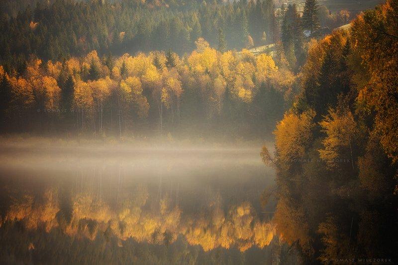 poland, polish, landscape, sunrise, sunset, colours, autumn, awesome, amazing, adventure, travel, beautiful, morning, reflection, trees, lake Autumn reflectionphoto preview