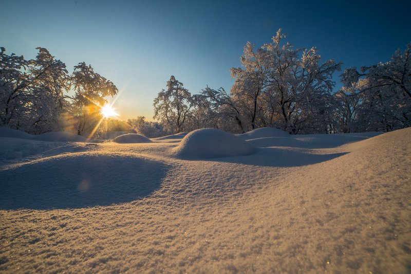 снег, winter, пейзаж, солнце, sun, сугробы Снежное покрывалоphoto preview