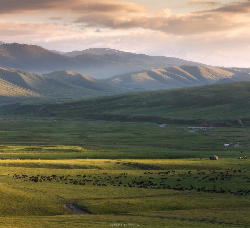 казахстан, тянь-шань, фото казахстана, пейзажи казахстана, ассы, асы, заилийский-алатау, фототуры казахстан, горы казахстана, Летний вечер на плато Асыphoto preview