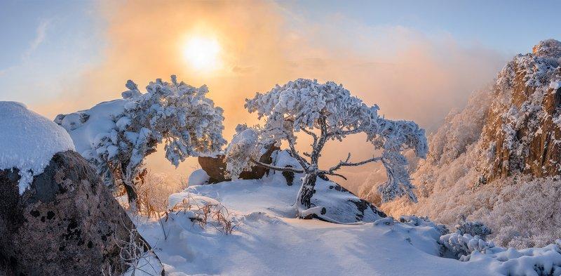 mountains,peak,hiking,winter,light,snow,trees Warmestphoto preview