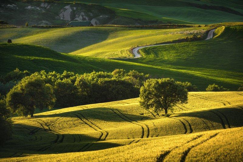 #tuscany #italy #landscapephotography #tuscanyworkshop #photographyworkshop #valdorcia Sunset in Val d\'Orcia, Tuscanyphoto preview