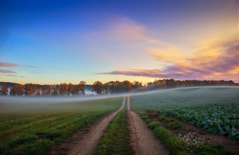 рассвет, осень, дорога, Дорога в рассветphoto preview