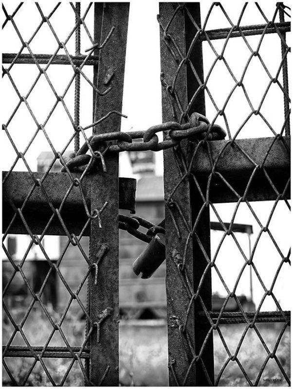 связанные одной цепью...photo preview