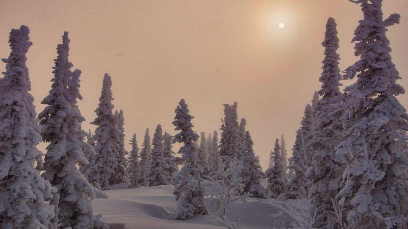 шерегеш, утро, восход, солнце, снег, зима, сибирь, сугробы Контрасты другой планеты...photo preview