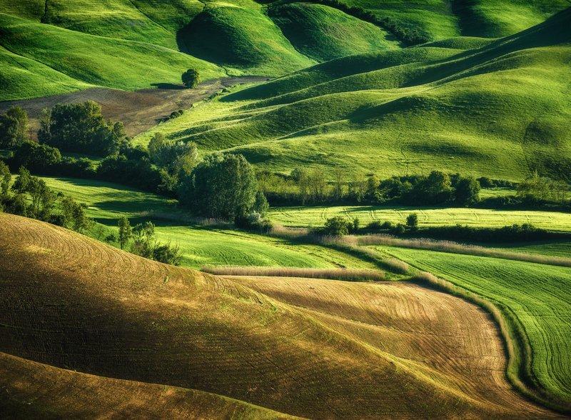 #tuscany #italy #landscapephotography #tuscanyworkshop #photographyworkshop #valdorcia Greens mornings photo preview