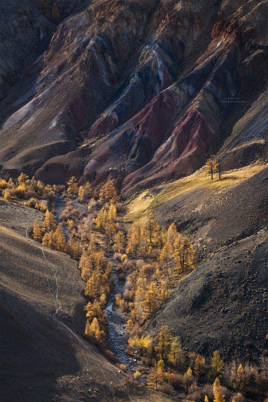 алтай, россия, кызыл-чин, горы, осень, пейзаж, природа, степь Где-то на Марсеphoto preview