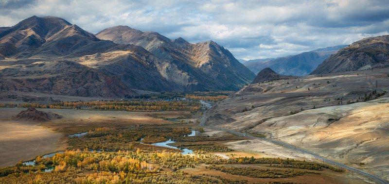 пейзаж, природа, панорама, горы, красная, желтая, золотая, осень, Алтай, Сибирь, холмы, хребет, река, Чуя, степь, долина, лес, широкий, большой, высокий Долина Чуиphoto preview