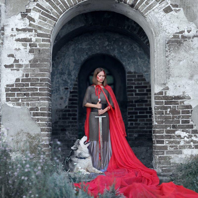 замок, кольчуга, скиф, маламут, аляскинский маламут, мкч, девушка с мечом, девушка воин, девушка в кольчуге, красный плащ photo preview