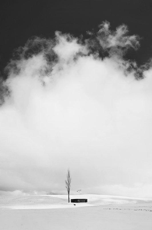 conceptual, art, fine art, minimal Dream Hut in Cold Paradisephoto preview