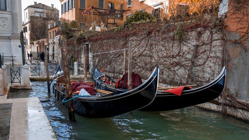 Венеция позавчераphoto preview