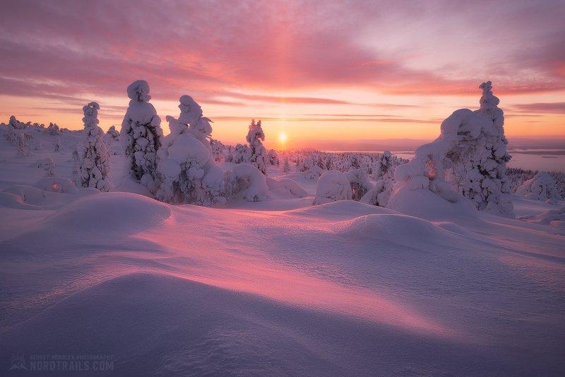 кольский, кольский полуостров, кандалакша, зима, winter, snow, north Зимняя сказка на закате дняphoto preview