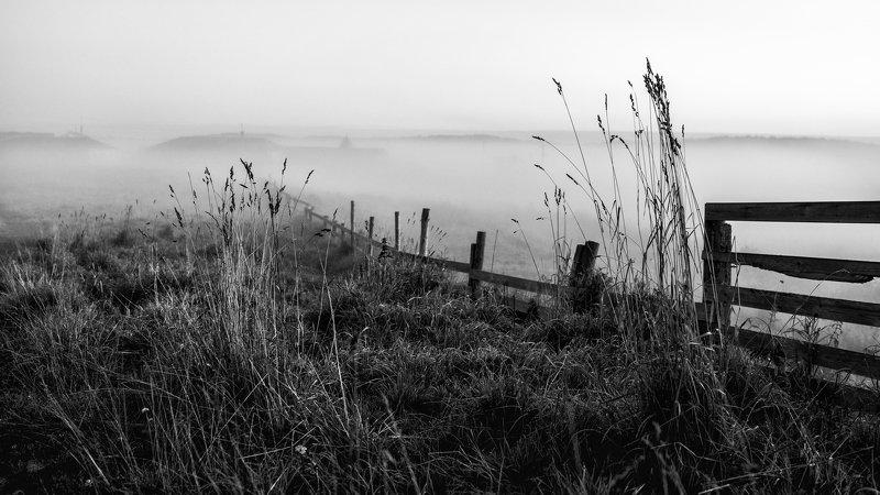 соловки, соловецкие острова, белое море, утро, туман, монстырь, рассвет, трава, ник васильев, Утро Соловецкое.photo preview