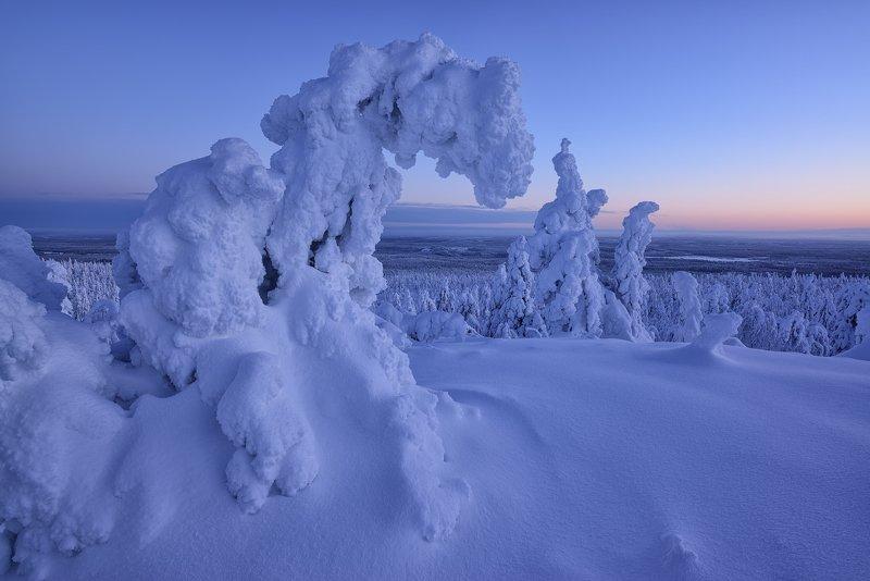 Зима...снег...стужа...photo preview