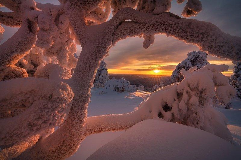 Окно в зимуphoto preview