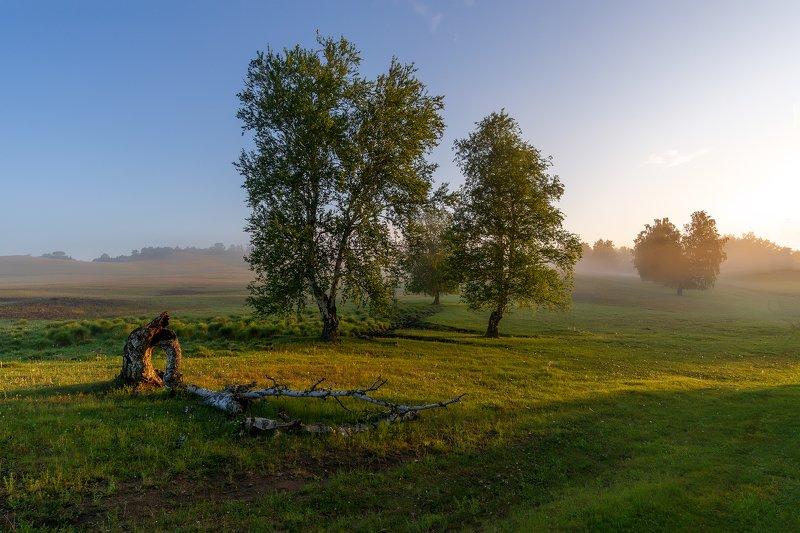 утро, рассвет, восход, туман, лучи Мгновение летаphoto preview