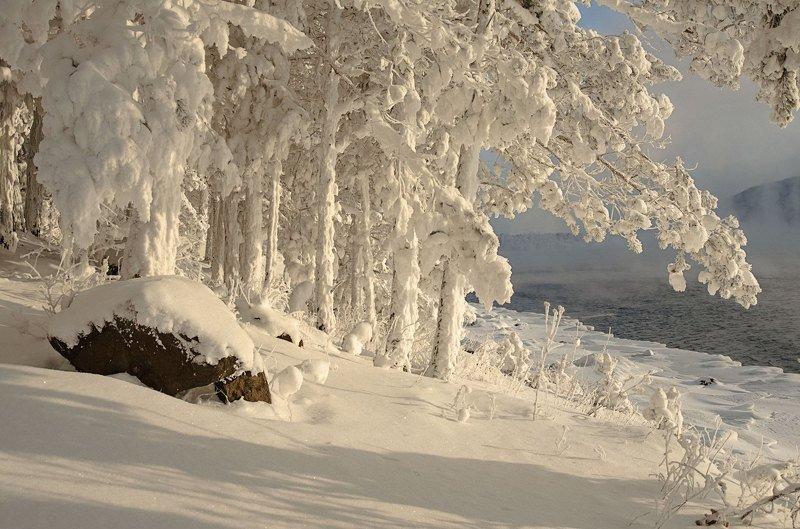 мороз, зима, енисей.иней Новогодние  зимние зарисовки.photo preview